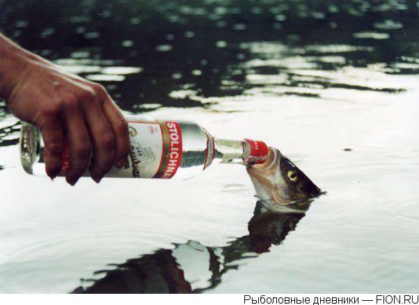 Tak takhle ne! Zákaz krmení zahrnuje samozřejmě i zákaz napájení!