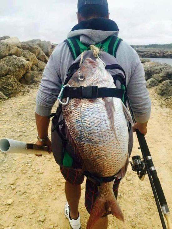 Takhle ne! Velké ryby vracíme vodě!